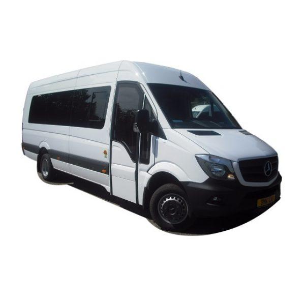 Vendre Minibus Minicar Sprinter 22 places scolaire avec porte vitrée