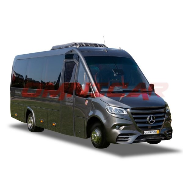 Omnicar Sprinter VIP LD sièges 1er classe sur châssis et soutes latérale plus coffre arrière 519 automatique 16+1+1